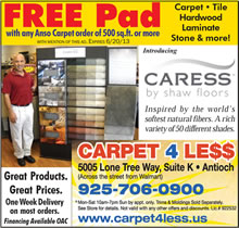Carpet4Less