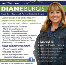 Diane Burgis