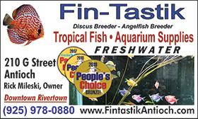 Fin-Tastik-09-19left