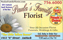 Paula's11-17
