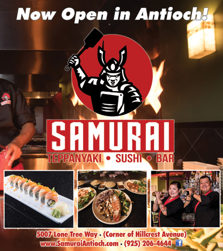 Samurai-cover-01-19