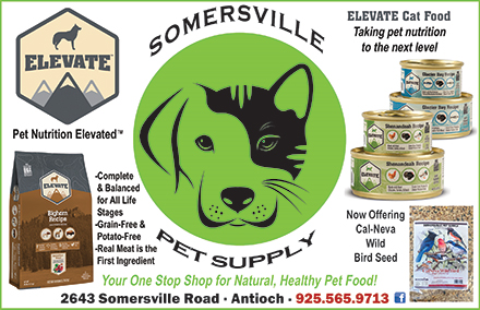 Somersville-Pet-Supply-06-19.jpg