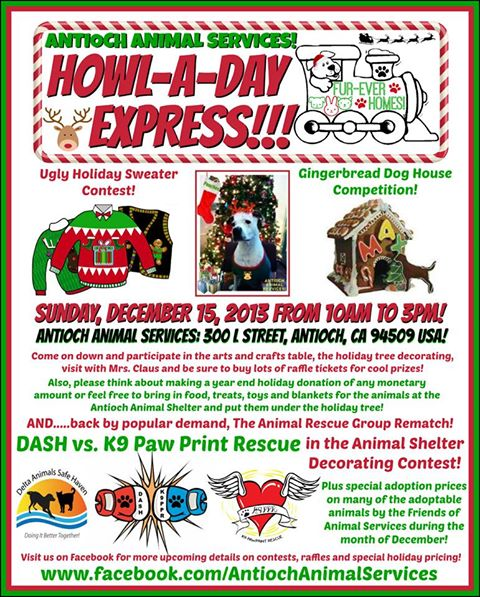 christmas shelter event Antioch Animal Shelter to hold Howl A Day Express event on Sunday