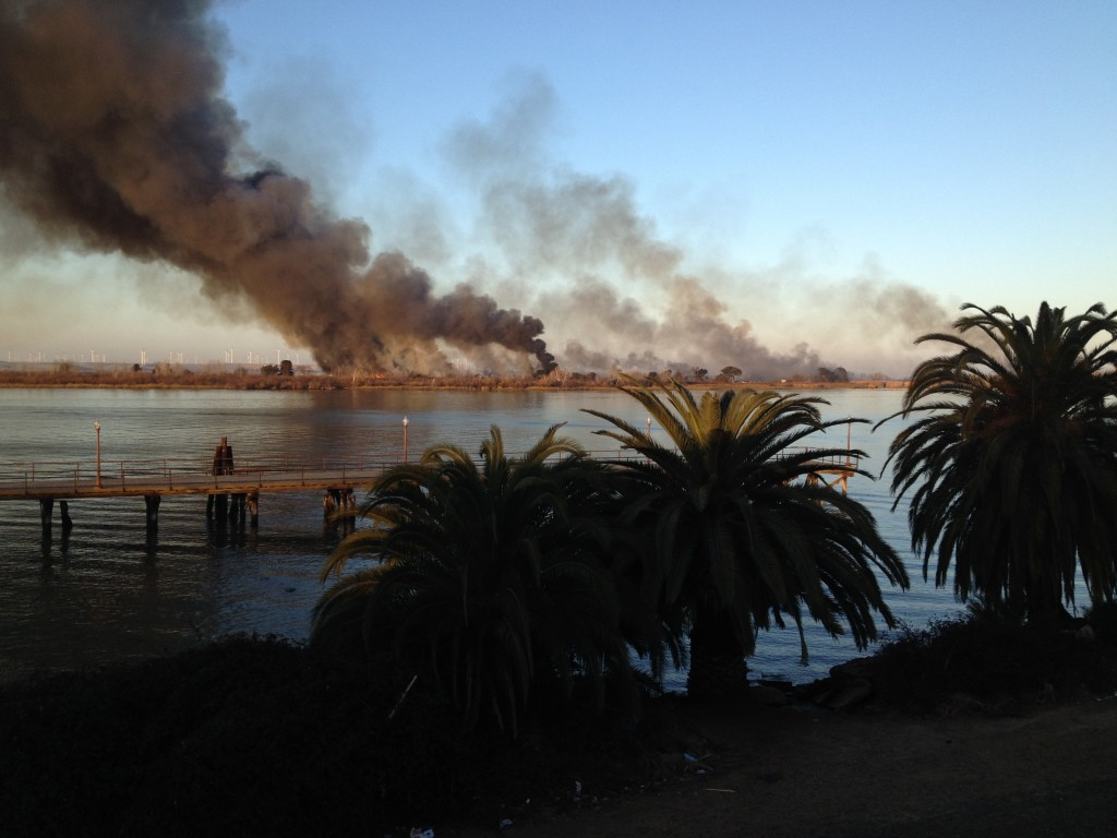 IMG 0165 1024x768 Fire burns cabins on Kimball Island across river from Antioch today