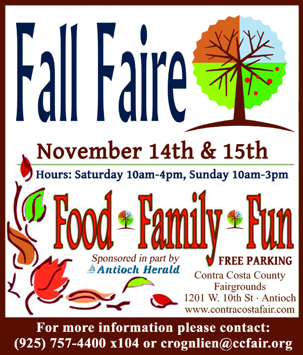 Fall Faire 11-15