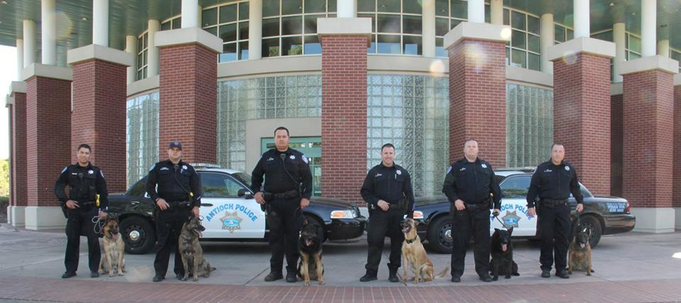 Antioch Police Department Canine Unit. photo courtesy of APD