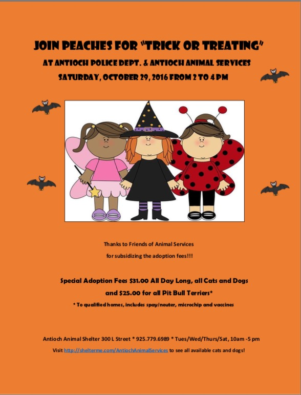 aas-trick-or-treat-10-29-16