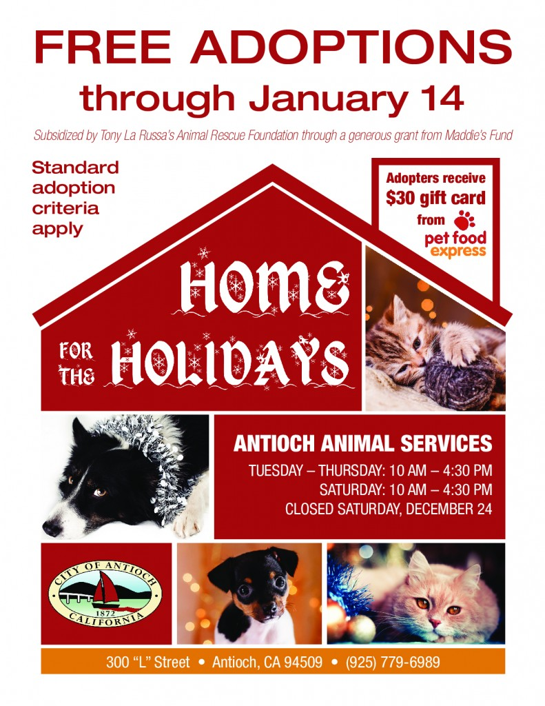antioch_animal_services_home_for_the_holidaysv2