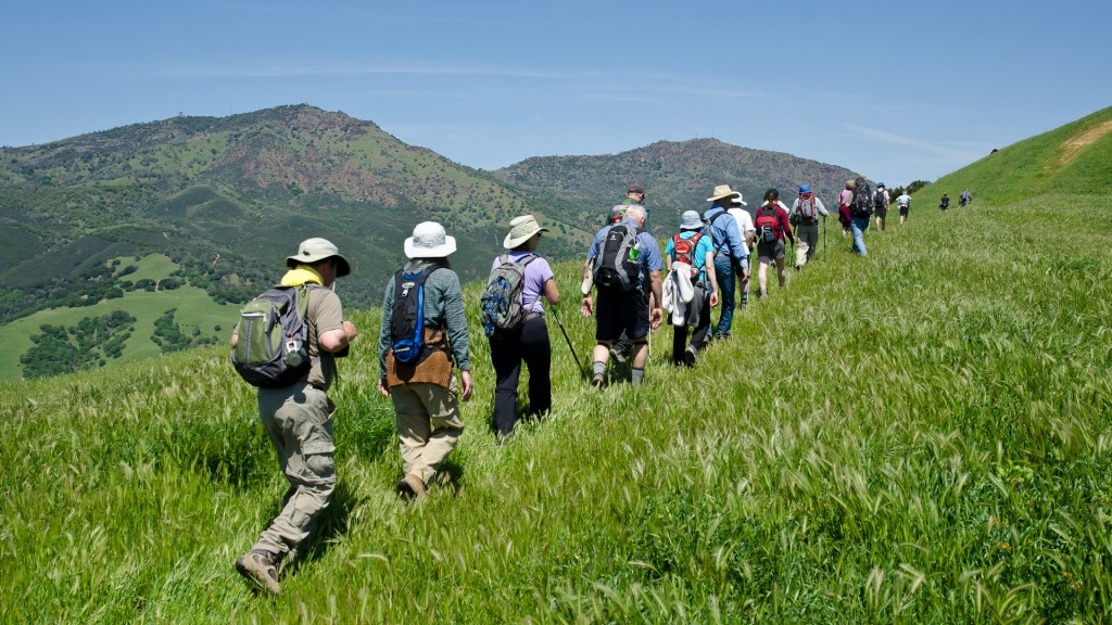 Hikers enjoy the trails on Save Mount Diablo's Four Days Diablo Group Camping Trip, a 30-mile trek along the Diablo Trail over 4 day leading you on an adventure through rarely seen Mount Diablo landscapes. Photo by Scott Hein, Director, Save Mt. Diablo