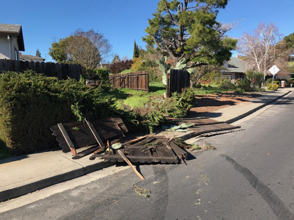 "The damage to the fence and backyard caused by an errant driver, early Friday morning, Jan. 27, 2017. The cactus, named ""Mickey"" by owner Sam Quintero, in the corner survived."